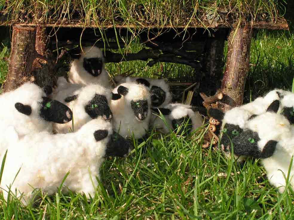 Zehn weiße Filzschafe mit schwarzen Gesichtern stehen und liegen im Gras vor und im Innern einer Hütte. Die Hütte besteht aus Zweigen mit einem Grasdach.